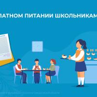 О бесплатном питании школьникам